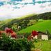 San Valentino alla Muta Val Venosta Alto Adige