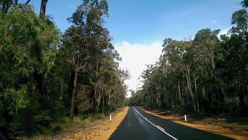 Travelling Western Australia road