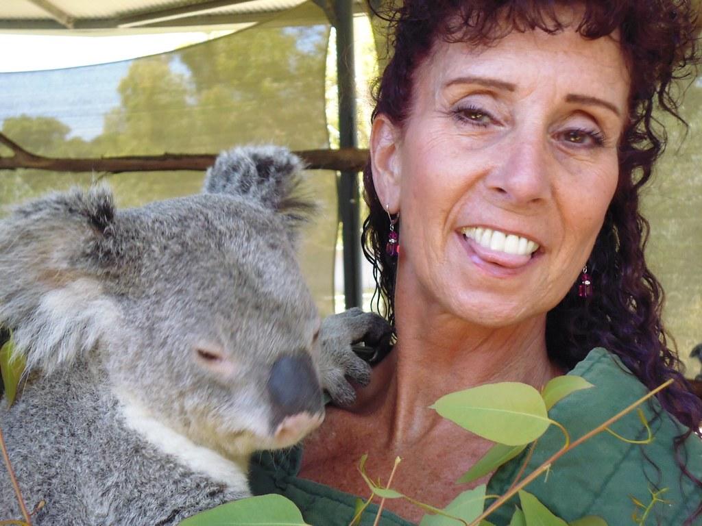 p1030034 sue holding william cohunu koala park byford. Black Bedroom Furniture Sets. Home Design Ideas
