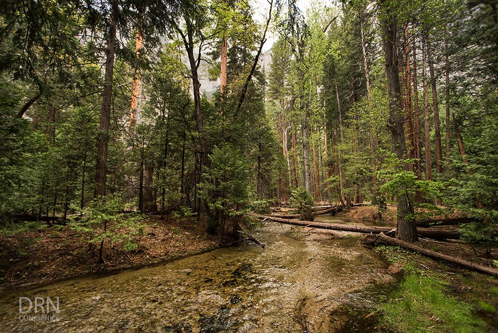 Yosemite - 05.08.16