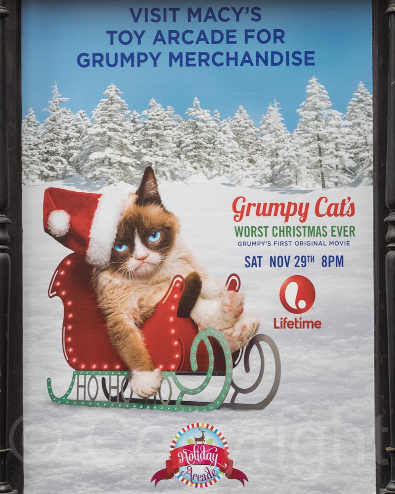 Grumpy Cat's Worst Christmas Ever Movie Poster, Macy's Dep… | Flickr
