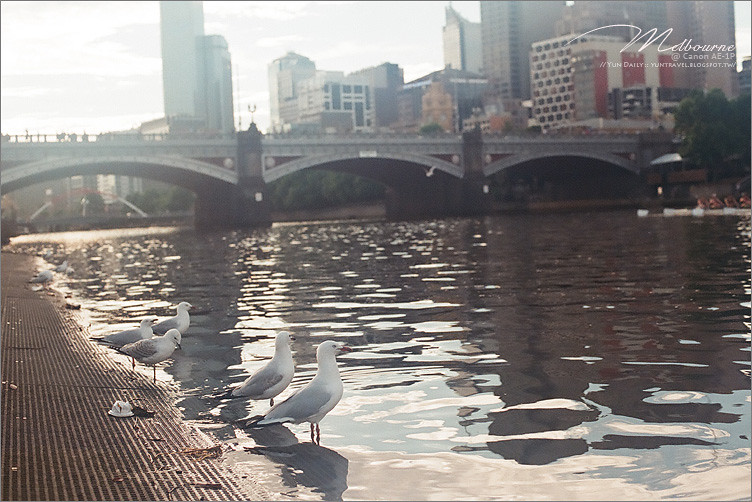 底片︱AUS WH.捲二.Melbourne × FUJI XTRA-400