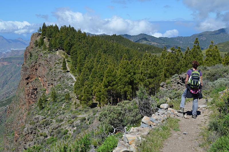 Artenera route, Gran Canaria