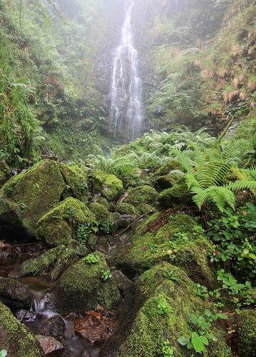 Parque Natural de #Gorbeia #Orozko #DePaseoConLarri #Flickr - -603