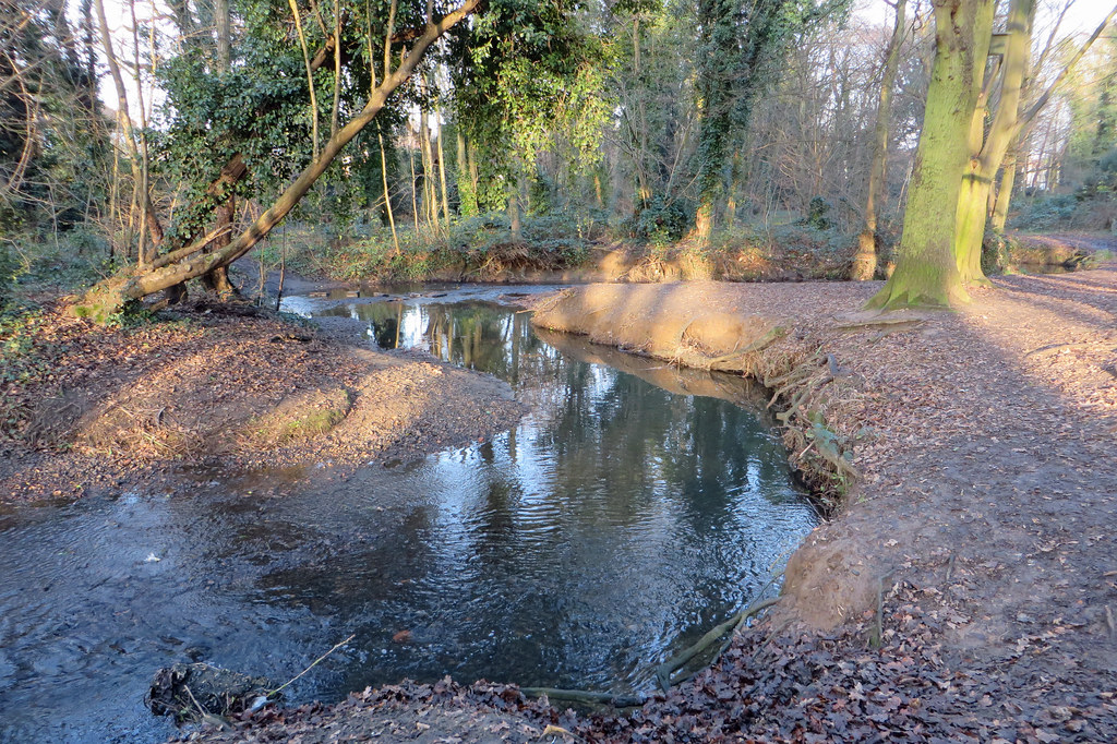 River Shuttle, Bexley Woods | Some excellent meanders ...  River