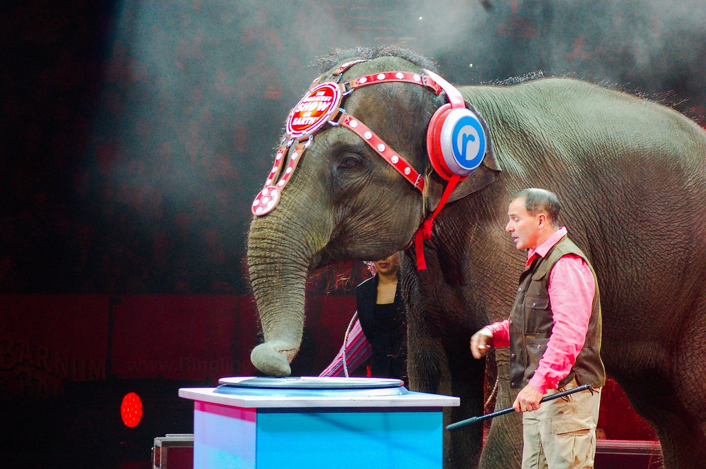 Ringling Brothers Images