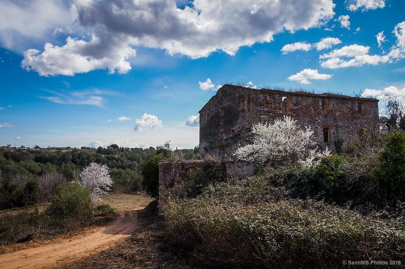 La Torre del Canonge