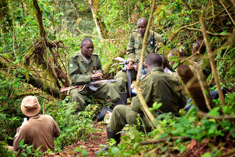 Lunch With the Scouts, Bwindi,Uganda