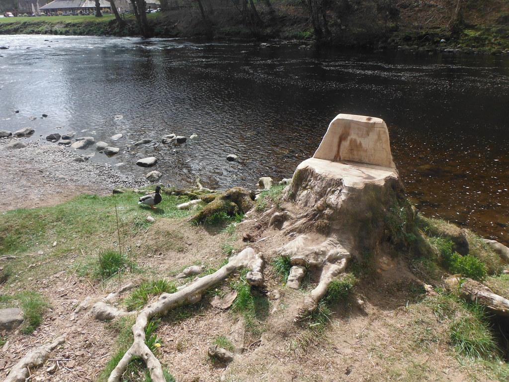 Stump Throne