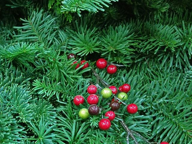 Christmas Greenery Flickr Photo Sharing