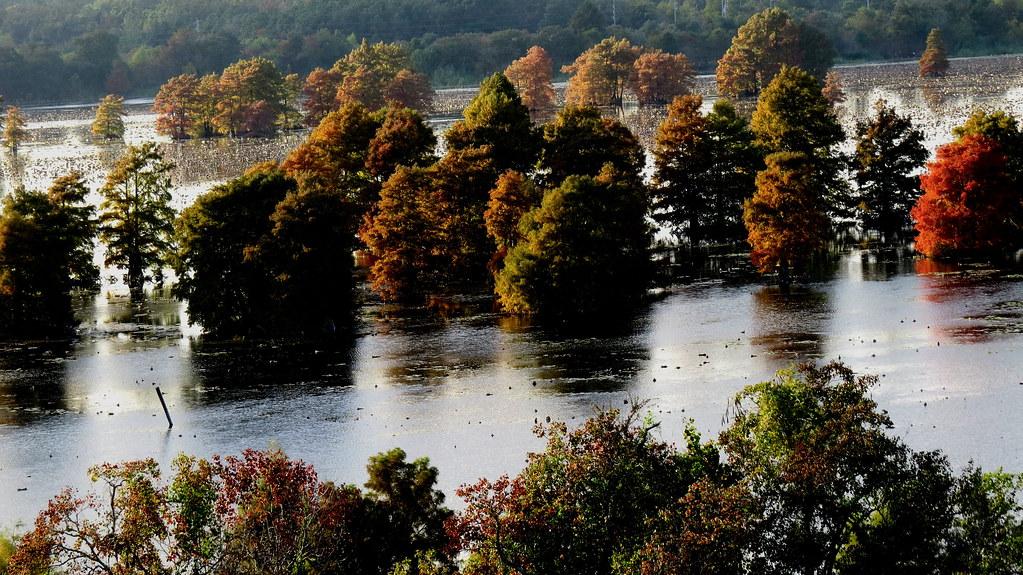 Sheldon lake state park sheldon lake old reservoir now for Sheldon lake fishing