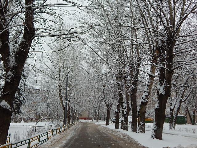 еще двор в снегу