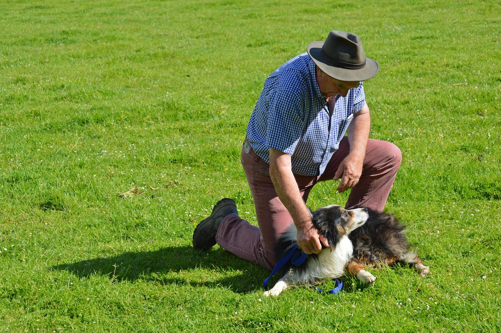 Irish farmer and his sheepdog