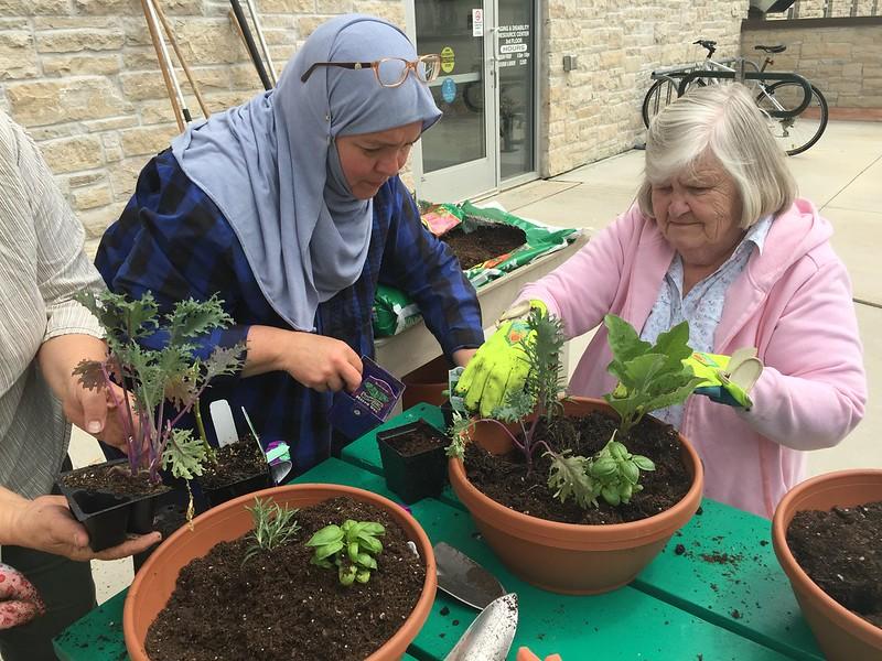 image of volunteers gardening