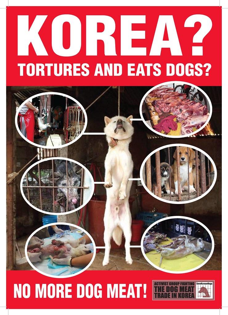 Nami Kim Team Anti-dog meat poster