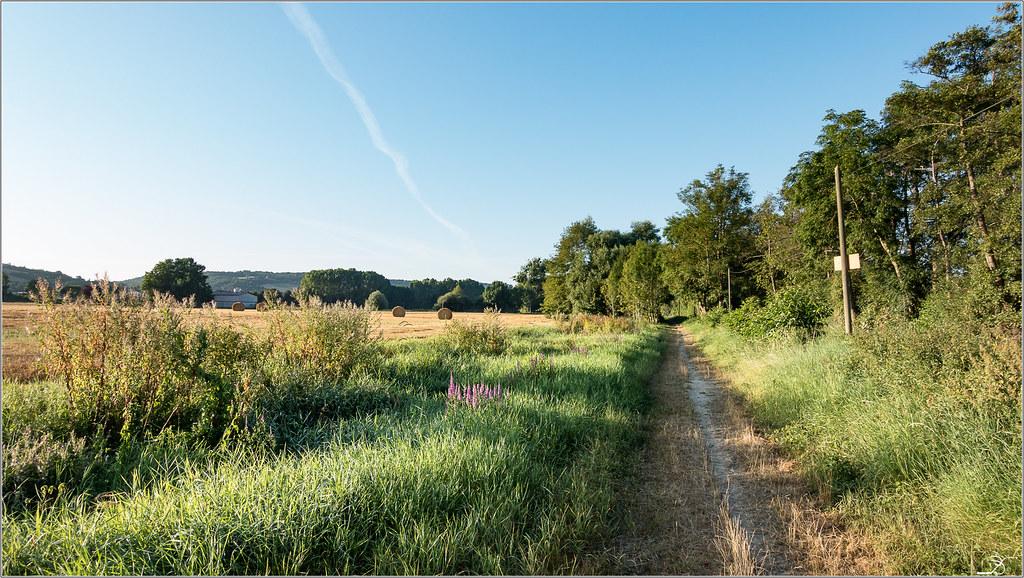 Balade à Villeneuve sur Yonne 28650872000_18b4dbbcee_b