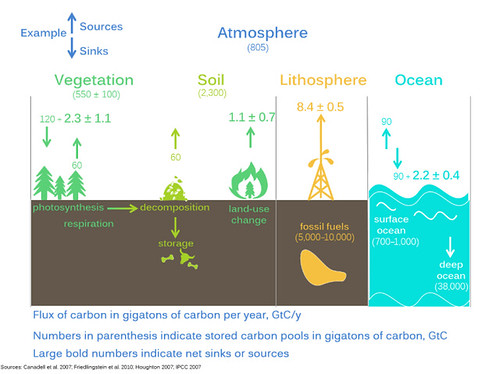 The carbon cycle from the climate change science and modeling education module