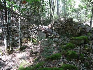 RD du Carciara (branche Paliri) : vestiges de deux caseddi imposants avant démaquisage