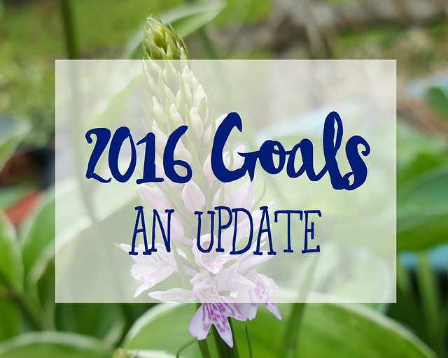 2016 Goals Mid-Year Update