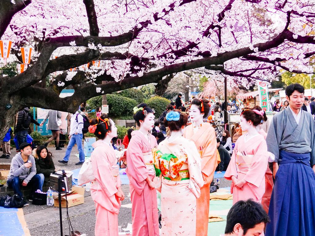 Blossom Japanese Restaurant