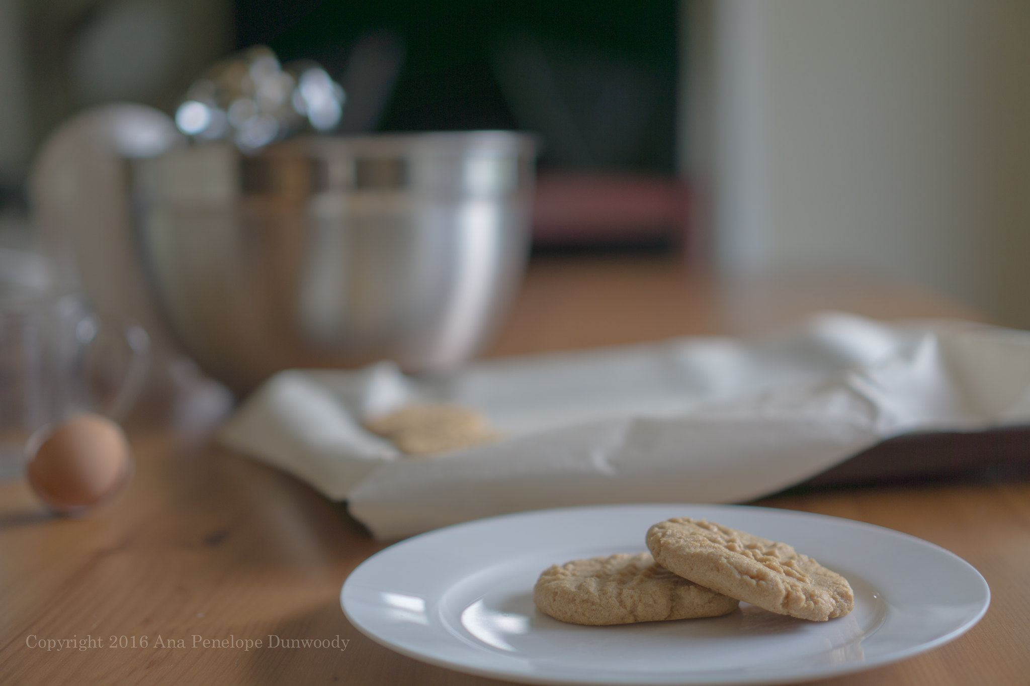 Last Peanut Butter Cookie Picture