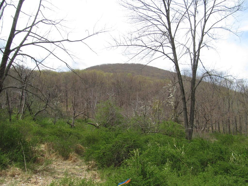 Doodletown - Bear Mountain State - 479.6KB