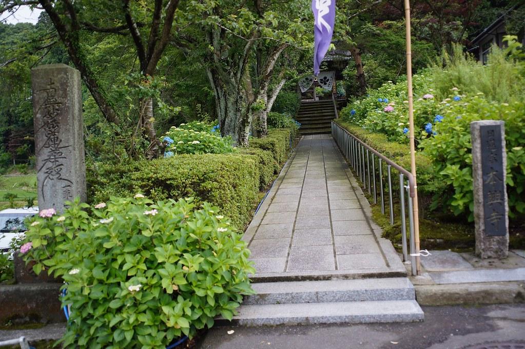 "KANZAWA AJISAI Temple ""HONKOUJI"""