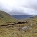 Bealach above Loch Fannaich