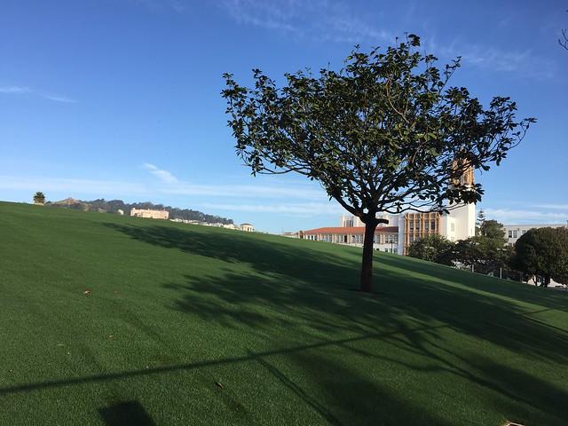 Dolores Park Improvement Project