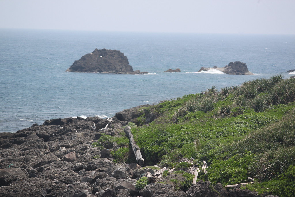 離岸島被比西里岸部落稱為nowalian,整個島都有小地名,是過往居民生活的痕跡,像圖中小礁就是部落的人專門採集藤壺地方。