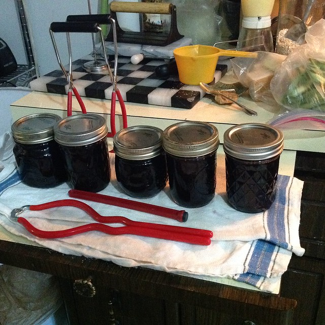 Mulberry Currant Jelly