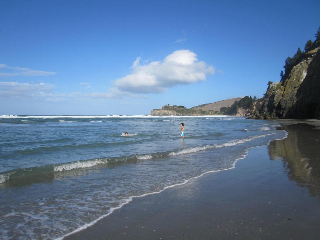 Waitati beach