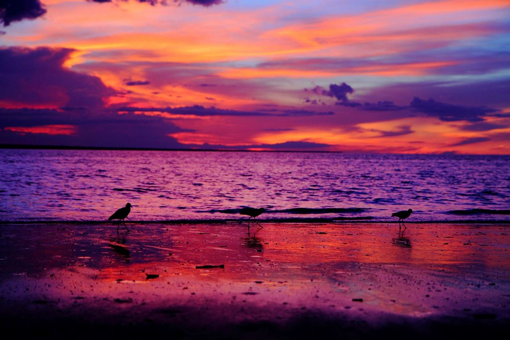 Purple Beach Sunset Tumblr Wallpaper High Quality | Purple ...