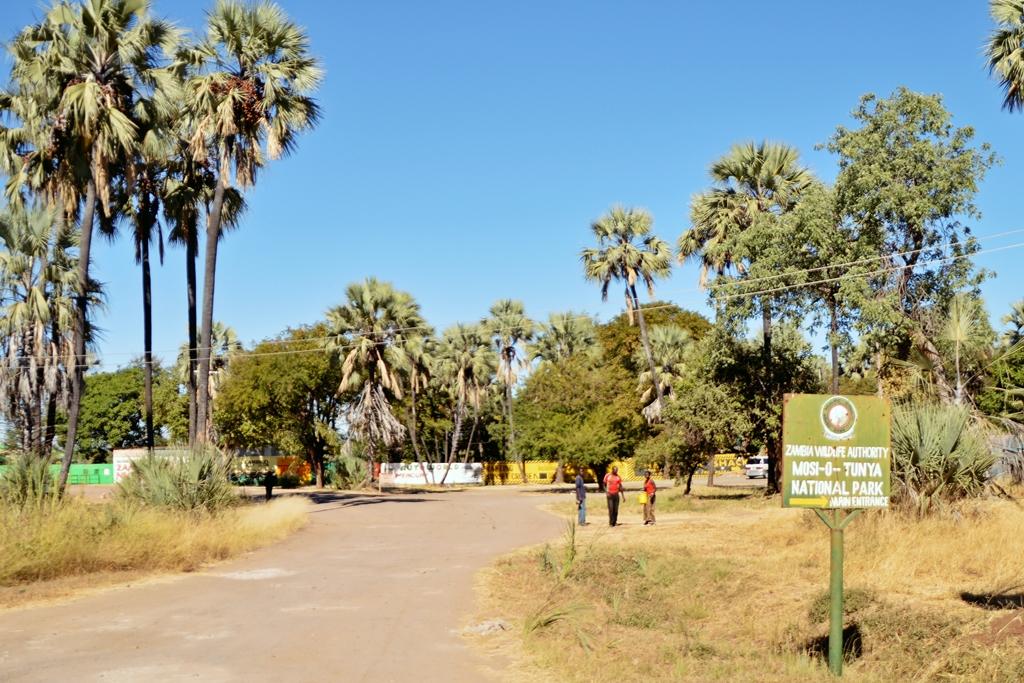 safari74