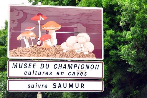Schlösser der Loire Saumur Tuffstein Stundenbuch des Herzogs von Berry Champignonzucht Foto Brigitte Stolle 2016
