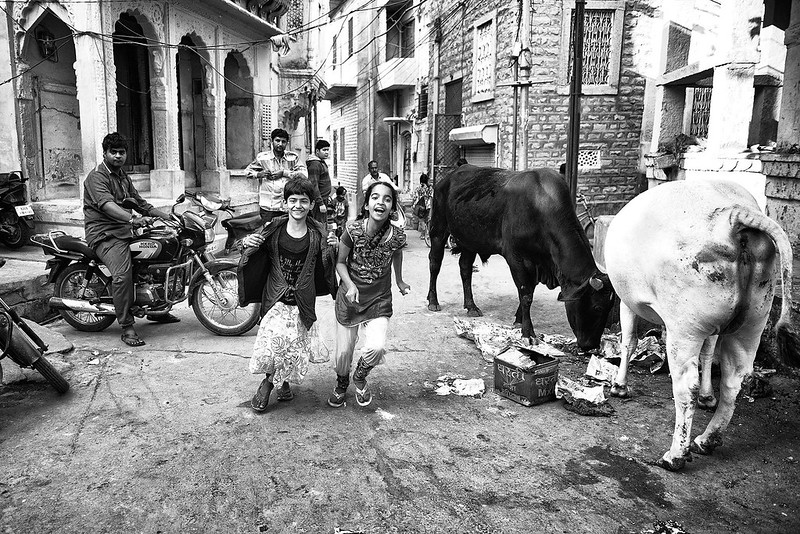 Urban street Jodhpur