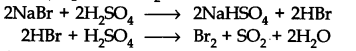 ncert-solutions-for-class-11-chemistry-chapter-8-redox-reactions-20