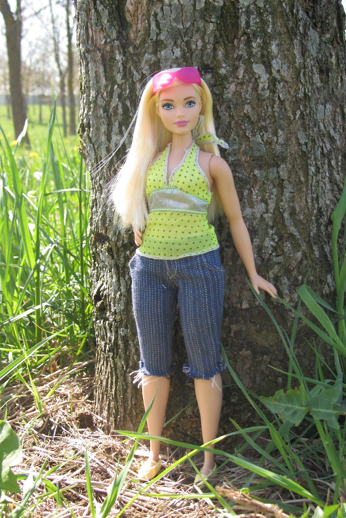 Barbie Fashionistas Doll 22 Chambray Chic Curvy 2015 Mat Flickr