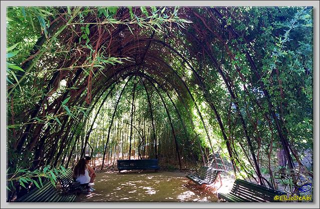 Jardines de Pedralbes. Barcelona (6)