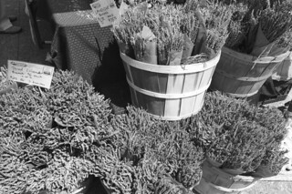 Eat Well Farms - Dried lavenders at the market bw
