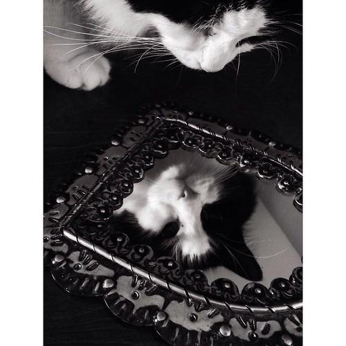 May 13 - Mirror