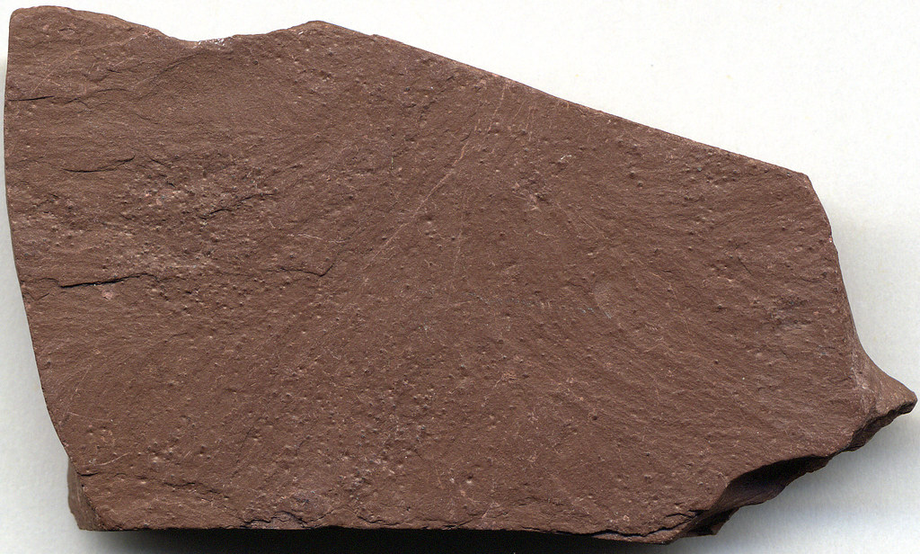 Red Slate Red Slate 5 8 Cm Across At Its Widest