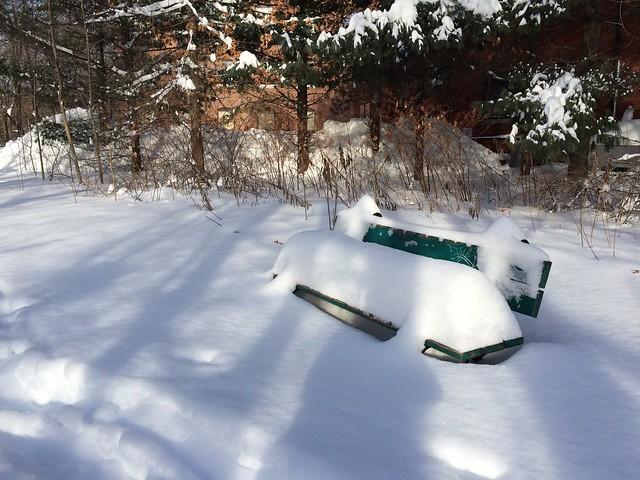 blizzard   january 2015
