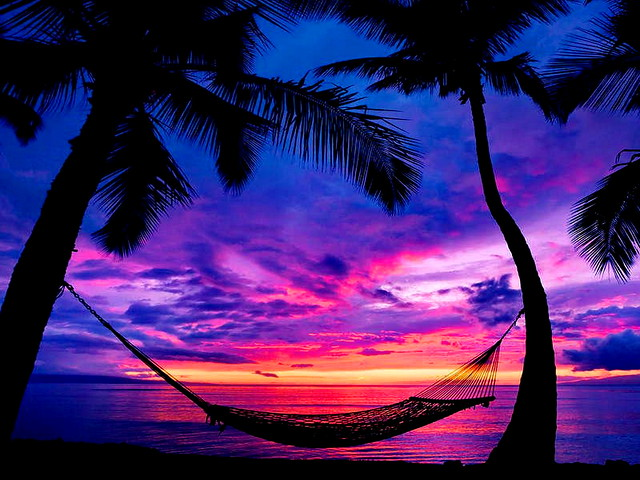 Tropical Beach Sunset With Hammock Wallpaper Free 2015