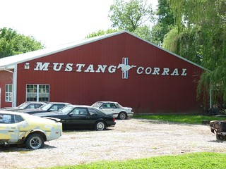 Mustang Corral