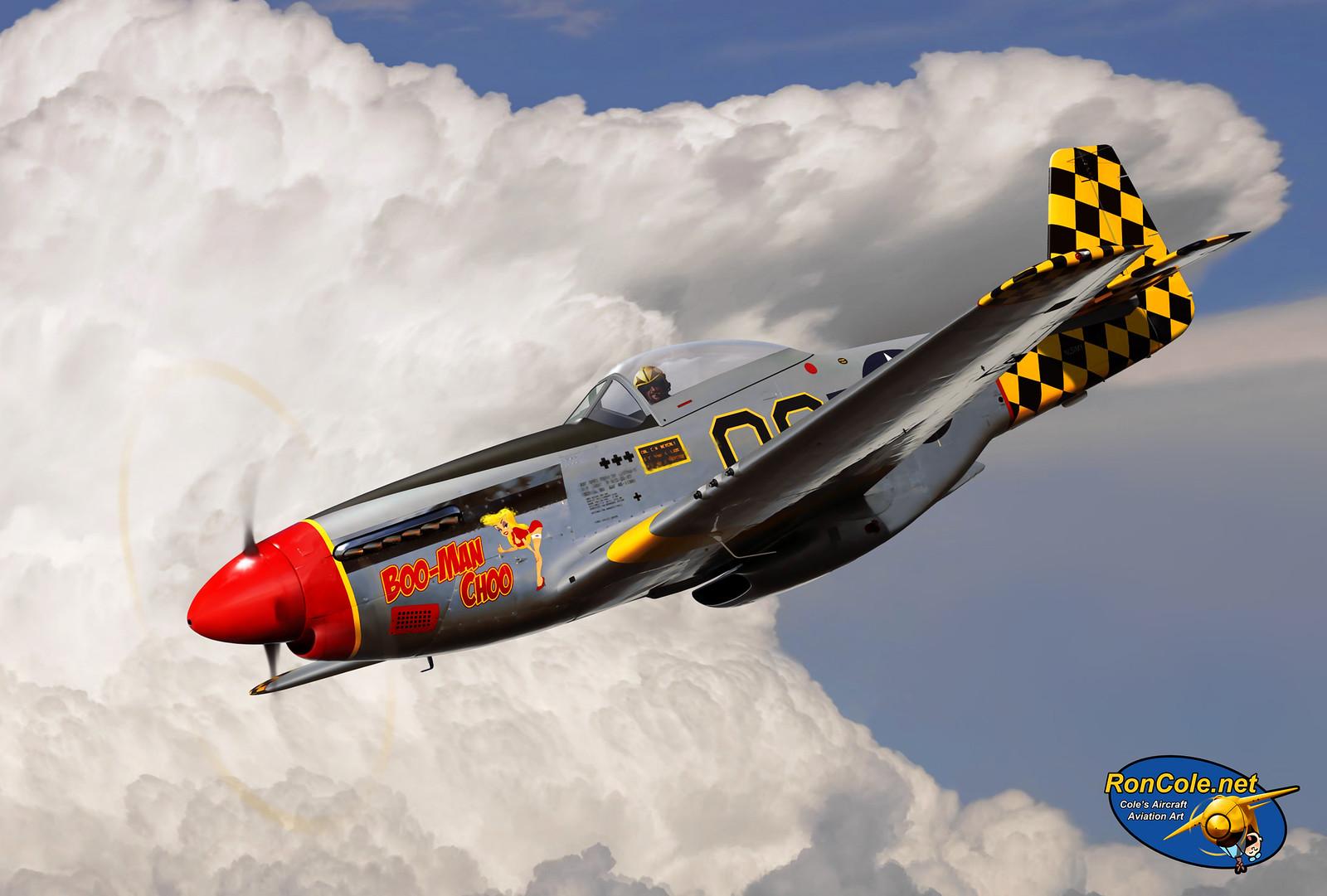 рисунок P-51D Mustang 'Boo-Man Choo'