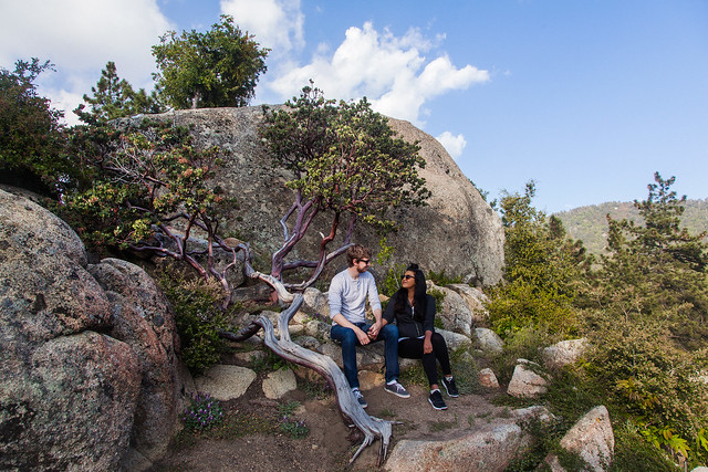 Idyllwild Southern California Camping and Travel