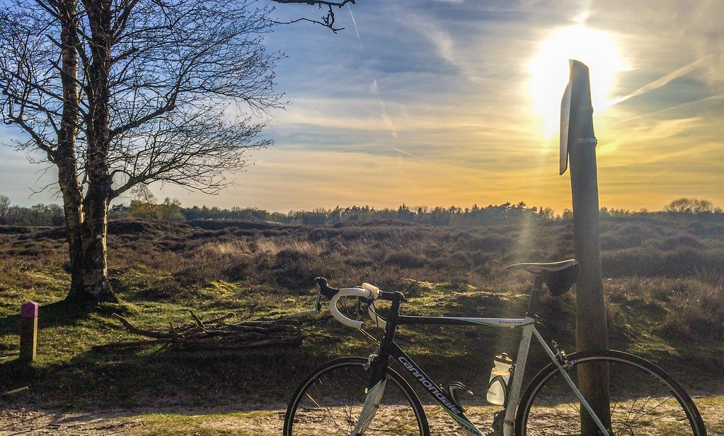 A Cannondale in the sunset. Drenthe is beautiful, but flat :)