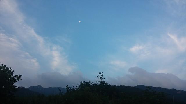 화북친우회-잡목 제거 작업