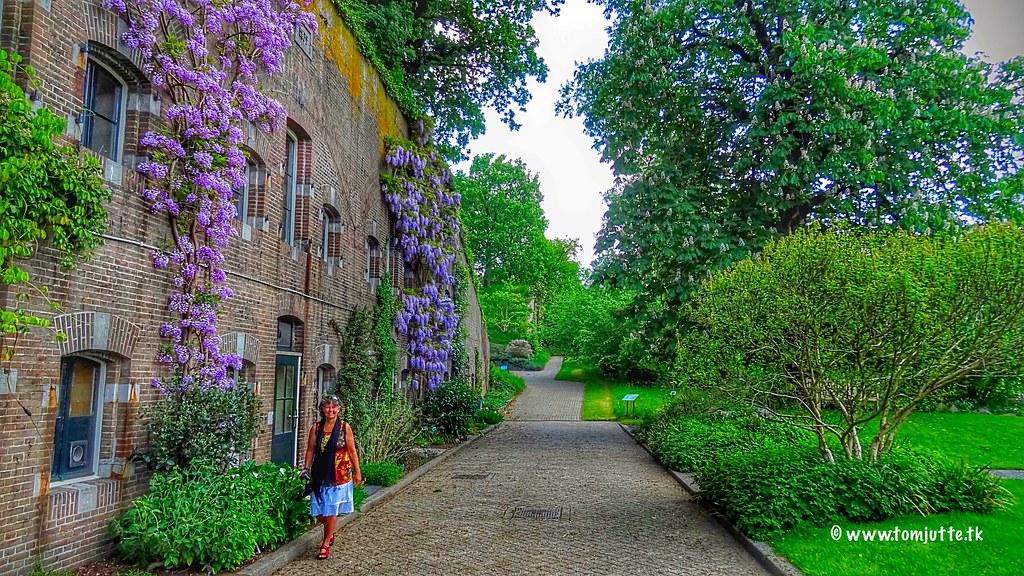 Botanic Gardens Utrecht Netherlands 4269 An